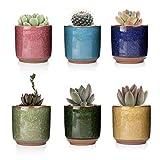 T4U 6.5CM Set of 6 Ice Crack Zisha Raised Serial Ceramica Vaso di Fiori Pianta Succulente Cactus Vaso di Fiori Giardino i vasi di Fiori vasi di Piante.