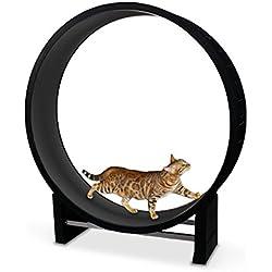 CanadianCat Company Katzenlaufrad 2.0 | Cat in Motion | Anthrazit - Trainingsgerät und Spielzeug für Katzen