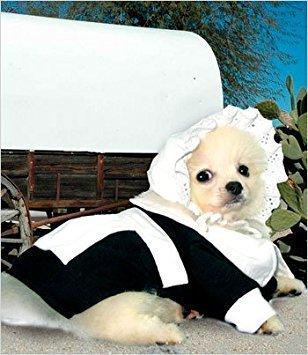 Puppe Love Pilgrim Hundekostüm für Mädchen, Größe 2, 23,9 x 30,5 x 35,6 cm g