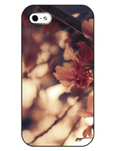 iCreat SUPER-CASE iphone cover schönes Design mit Rosa Blüten, Gemaltes iphone Hülle Gehäuse Hartschale harte Rückseite für Apple IPHONE 4 4G 4S IPHONE 4/4S