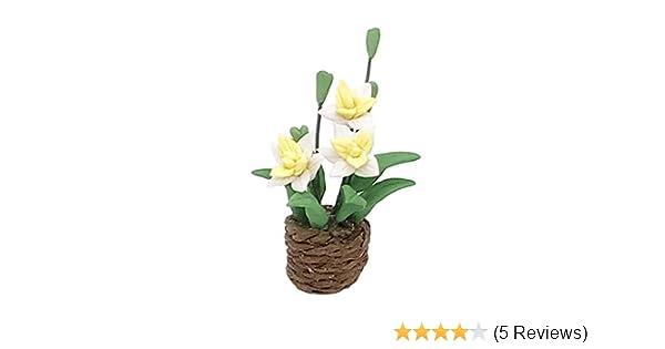 Puppenstuben Miniatur Blumen In Rattan Topf Pflanzer Puppenhaus Zubehör