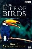 The Life of Birds(David Atten)