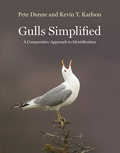 Gulls Simplified: A Comparative Approach to Identification (English Edition)
