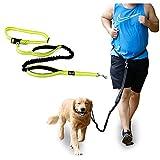 SymbolLife Joggingleine mit Bauchgurt Freihand Leine für Hunde Hundeleine zum Joggen Laufen Reflektierend Elastisch Vestellbar