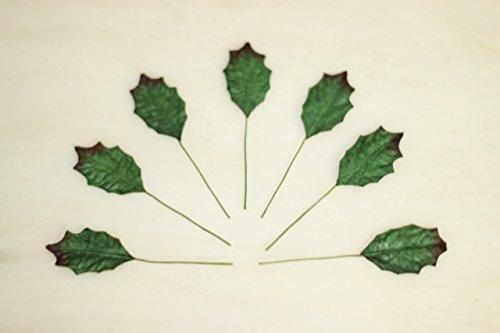 50 grune Holly Blatter Weihnachten Leaf Scrapbooking Handwerk Mulberry Papierkarte DIY