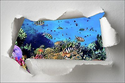 Adesivo trompe l'oeil strappa carta, motivo: pesci tropicali rif. 372, 30x20cm