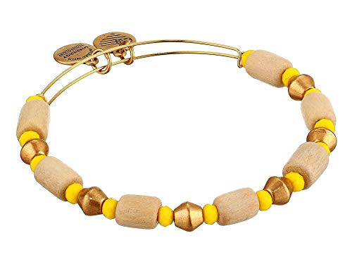 Alex And Ani Palm Mango Expandable Bangle Bracelet Rafaelian Gold (Gold Alex Und Ani Armreifen)
