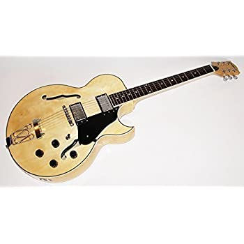 Cherrystone 4260180885835 Jazz/Blues E-Gitarre Semi Acoustic-N ...