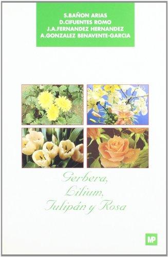 Gerbera, lilium, tulipán y rosa