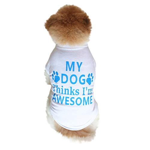 Am Besten Weiße Hemden (TAOtTAO Am Besten Hundeliebhaber-Geschenk-Baumwollsommer-Hemd Kleine Hundekatze-Haustier-Kleidung-Westen-T-Shirt (XS, Weiß))