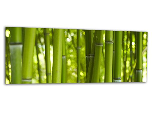 KD Dsign+ XXL Glasbild AG312500273 MURAL BAMBUS WALD ASIEN 125 x 50 cm/WANDBILD Deco Glass/Handmade
