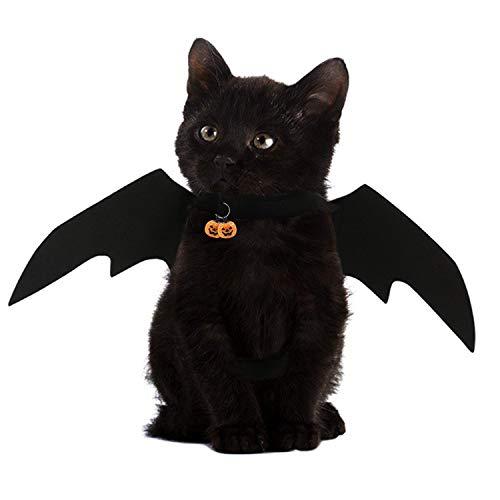 NICREW Halloween Maskottchen Kostüm, Fledermausflügel für Haustiere Katze -