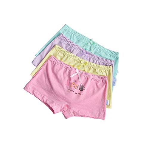 Cheerykids Toddler Girls Underwear Cotton Boyshort Hipster Princess Panties Kids Briefs Pack of 4