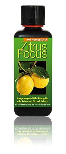 dunger-zitrus-focus-300ml-flussigdunger-konzentrat-orangen-frucht-zitrone