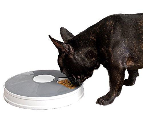 infactory Haustier-Futterautomat: Zeitgesteuerter 6-fach-Katzen- & Hunde-Futterspender, LCD-Display (Futterautomat als Hundebar)