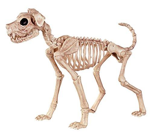 Crazy Bonez Skelett Hund–Buster (Prop Skelett Halloween Hund)