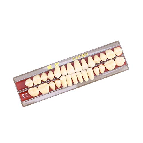 SUPVOX 1 Box Zähne Reparatur Set Arzt Dental mündliches Material Legierungsstift Porzellan Zahn Zahnprothese (Second Grade 22)