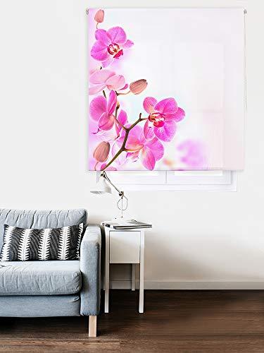 HappyStor HSCZExc078002 Estor Enrollable Estampado Digital Zen Tejido Traslúcido Medida Total Estor:80x250 (**Solo Ancho Tela:76-77cm.**)