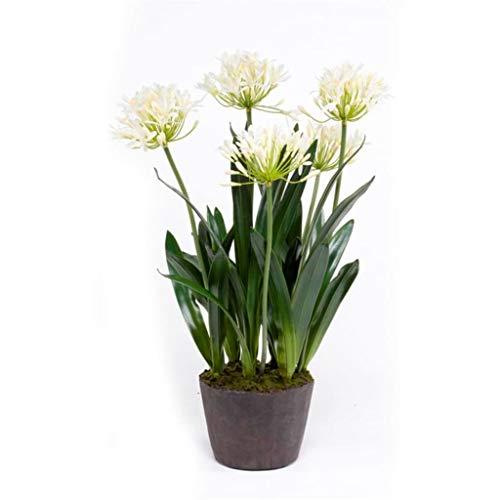 Emerald Künstliche Pflanze Agapanthus Schmucklilie 75cm Creme Kunstpflanze