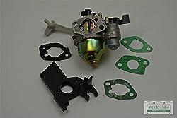 Reparatursatz Vergaser Inkl. Dichtsatz Passend Loncin G160, G160 Fd