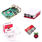Raspberry Pi 4 Model B 4GB Desktop-Starter-Kit (16 GB, weiß)
