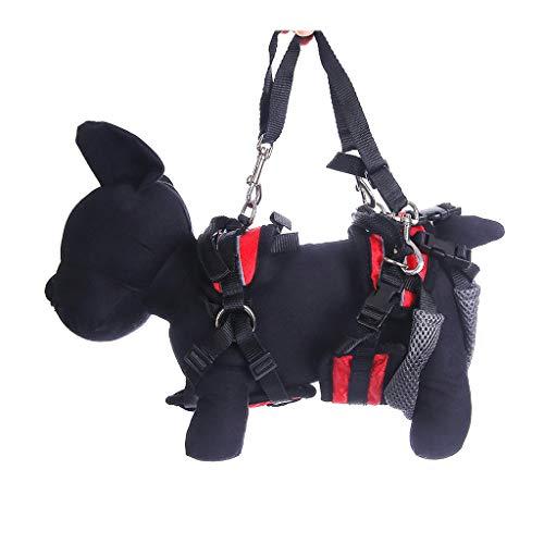 MLMCWCJ Cinturón de Salida asistida para discapacitados para Perros, Adecuado para Mascotas Período Especial Antes y después de los Miembros Ayuda Tracción roja (Capacidad : Fore and Hind Limbs)