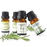 Huiles Essentielle JIJI886 Aromathérapie pour Sauna,Massage,humidificateur,...