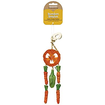Rosewood Boredom Breaker Carrot Dream Catcher for Small Animals by Rosewood
