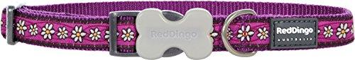 Red Dingo Hundehalsband, Gemustert, GrößeM, 2x30-47cm, Violett mit Gänseblümchen -