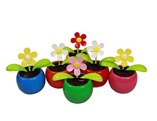 HAAC Solar Wackelblume Blume 2er Set