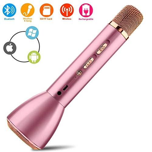 Rsiosle Bluetooth inalámbrico Micrófono Karaoke