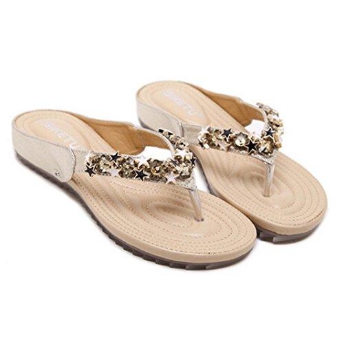 e3f46ae6b91 Slippers Pantoufles l été Femme honestyi Les Tongs de Bohème Coin  Occasionnels Clip Toe Chaussures