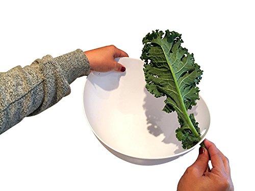 Küche Labs Große familiengerechte abgewinkelt Salatschüssel mit Grünkohl Abisolierwerkzeug eingebaut–Perfekt für mit Kräutern, Mangold, und Collard Greens (Geschirr Geschirr-sets Rachel Ray)