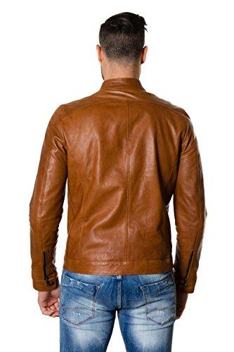 D'Arienzo - Blouson - Homme cuir