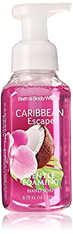 Bath and Body Works - Gentle Foaming Hand Soap Caribbean Escape Bath and Body Works