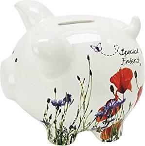 suki-quite-simply-special-friend-piggy-bank