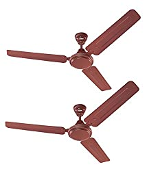 Eveready Ceiling Fan 1200mm FAB M Brown Pack of 2