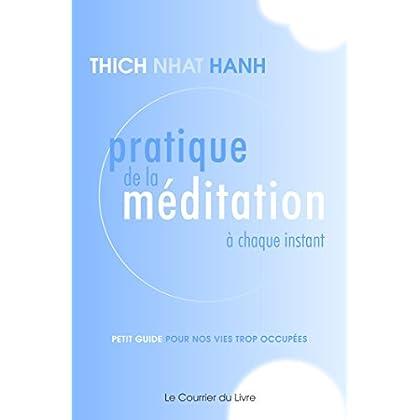 Pratique de la méditation à chaque instant : Petit guide pour nos vies trop occupées (Sciences humaines\Traditions)