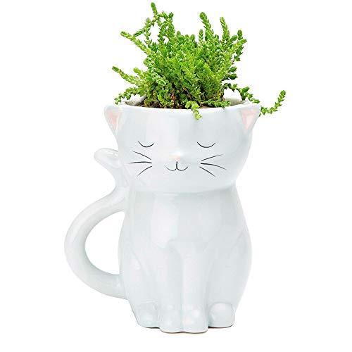 Streamline Blumentopf mit Katzenmotiv, Keramik
