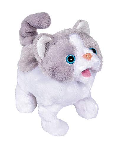 Simba 105893379 Chi Love Little Cat - Peluche