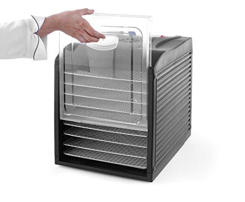 HENDI Dörrautomat mit Temperaturregler, Dörrgerät für Lebensmittel, Obst- Fleisch- Früchte-Trockner, Dehydrator, BPA-frei, 9 Blechen