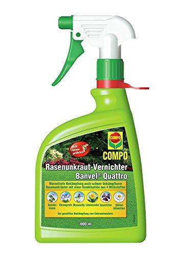 COMPO Rasenunkraut-Vernichter Banvel Quattro AF, Bekämpfung von schwerbekämpfbaren Unkräutern im Rasen, Anwendungsfertig, 1 Liter