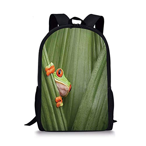School Bags Animal Decor,Red Eyed Tree Frog Crowling Between Leaves Tropical Jungle Rainforest Night Art,Green for Boys&Girls Mens Sport Daypack -