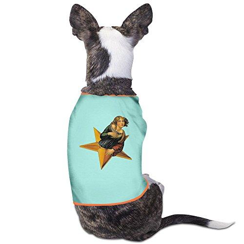 hfyen-la-bande-smashing-pumpkins-logo-quotidien-pet-t-shirt-pour-chien-vetements-manteau-pet-apparel
