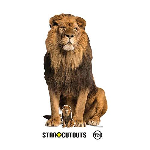 StarCutouts SC1438 - Figura Decorativa de león para Adultos (155 cm, Ideal para fanáticos de los Animales, Fiestas, coleccionistas, escenarios y Eventos), Multicolor