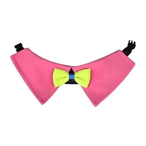 er Haustiere Tuch Kleine Accessoires für Party (Rosa) (Rosa Bandana Party Supplies)