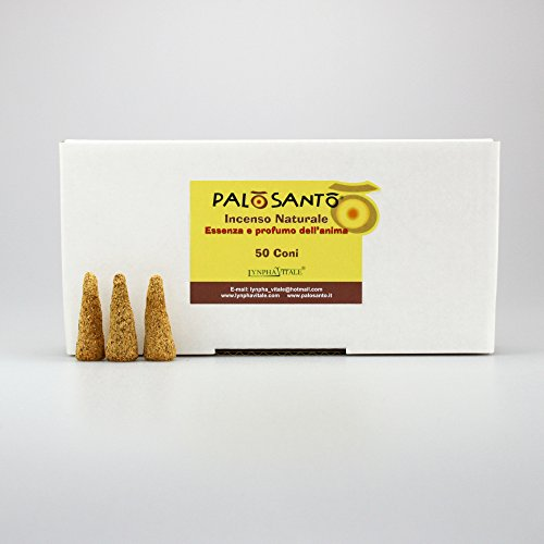 Cônes d'encens Palo Santo (Bois de Bursera Graveolens) - 50 cônes