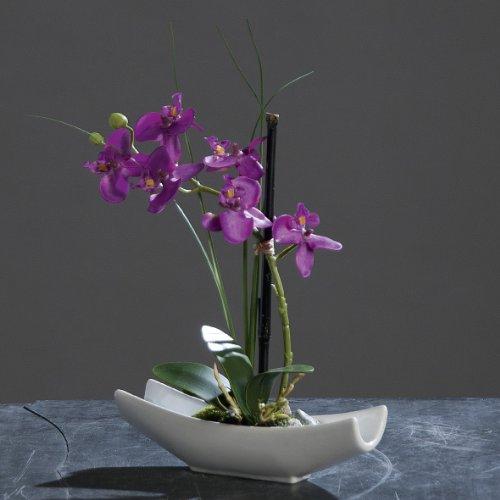Orchidea sintetica, ceae autunnali 28 cm bagnare