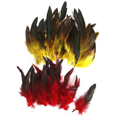 Fenteer 100x Natürliche Fasan Hahnenfedern Flügelfedern für Kostüme, -