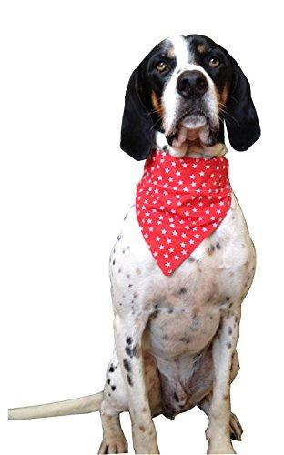 Hunde-Halstuch, über Halsband getragen, Design: Rot mit weißem Sternmuster